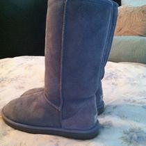 Blue Tall Uggs 100% Authentic  Will Go Fast Photo