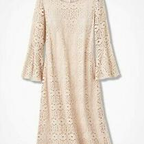Blush and Lace Flounced-Sleeve Dress Coldwater Creek Size 16 New Never Opened Photo