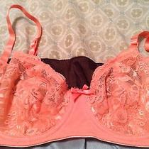 Blush Bra 34d 34 D Pink Sheer Lacy Cups Lace Sexy Euc Photo