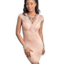 Blush Lace Dress Photo