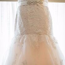 Blush Maggie Sottero Wedding Dress Plus Size 16/18 Photo