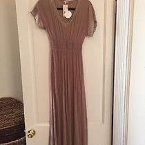 Blush Maxi Dress With Lace Detail Women's Small en Creme Photo