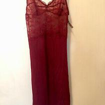 Blush Merlot Color Lace Sleepwear Size Xs Nwt Photo