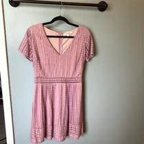 Blush Miami Dress- Large Photo