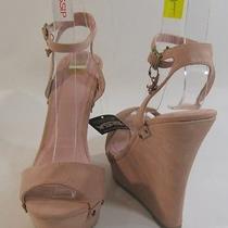 Blush Pink 5.5