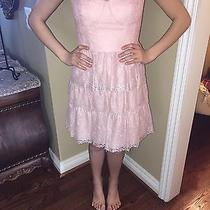 Blush Pink All Lace Dress Bcbg Photo