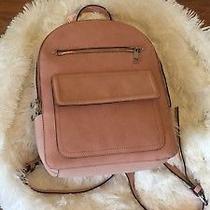 Blush Pink Backpack Photo