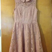 Blush Pink Collared Target Xhilaration Paisley Lace Skater Dress Medium Photo