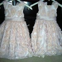 Blush Pink Flower Girl/holiday Dresses by American Princess Photo