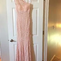 Blush Pink Lace Dress Photo