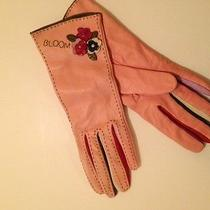 Blush Pink Multi Kid Leather Gloves With Floral Applique and Embroidery Photo