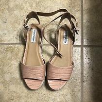 Blush Pink Steve Madden Espadrille Crocodile Sandals Size 8.5 Photo