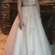 Blush Prom Dress Ball Gown Wedding Dress Photo