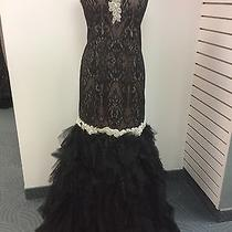 Blush Prom Dress Party  Evening  Long Formal Cocktail  Sexy Color Black Size 20w Photo