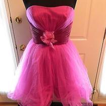 Blush Prom-Raspberry-Size 14 Photo