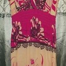 Blush Size Large Sundress Photo