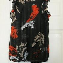 Bnwot Luxe Blush Black Red White Beige Feather Ruffle Top Size 10 Photo