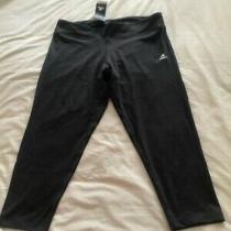 Bnwt Adidas Climalite Dark Grey Crop Active Running Bottoms Size L  Photo