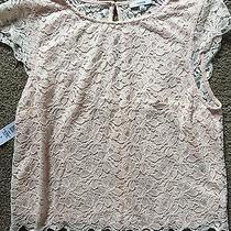 Bnwt Aritzia Blush Pink Lace Crop Shirt Photo