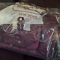 Bnwt Coach Campbell Satchel Combo - Hard to Find Photo
