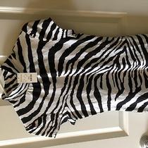 Bnwt Express Zebra Top Size Small Photo