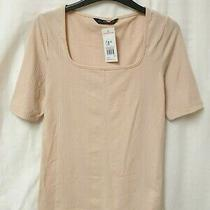 Bnwt f&f Women's Blush Pink Striped Square Neck Short Sleeve Top Size 12 Photo