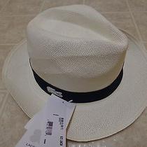 Bnwt Lacoste Hat Ivory Rk1804 51 Evo Tl Size Sz Large L59cm Marine New Mrp 160 Photo