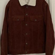 Bnwt Mens h&m Mini Me (Rust Brown) Pile-Lined Corduroy Jacket Size M (Rrp 40) Photo