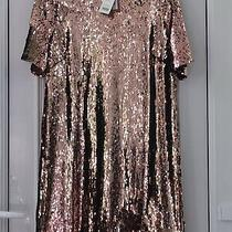 Bnwt Pinky Rose Gold Short Sleeved Sparkly Sequin Tunic Dress Size 18  Photo