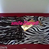 Bnwt Roberto Cavalli for at h&m Animal Zebra Print 100% Silk Scarf Wrap Photo