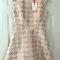 Bnwt Ted Baker Sz 10 (2) Isslay Rose Gold Blush Pink  fit&flare Dress Rrp 159 Photo