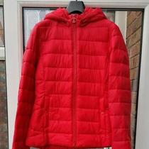 Bnwt Womens Barbour Landmass Hooded Quilted Jacket Red Uk14 Rrp169 Photo
