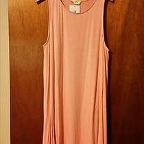Bo Bel Blush Color T-Shirt Dress Size Medium Photo