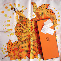 Box  Tag Hermes Hola Flamenca Pocket Scarf Gavroche Pochette by Dimitri Rybal Photo