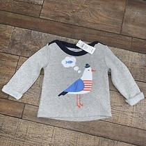 Boys 6-12 Month Baby Gap Seagull Gray & Blue Sweatshirt  Photo
