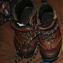 Boy's Timberlands Size 8 Photo