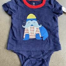 Boys 9-12 Months Baby Gap Navy Walrus Outfit Bodysuit  New Nwt Photo
