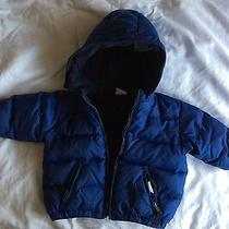 Boys Baby Gap Royal Blue Down Filled Puffer Coat 12-18 Mths Months Photo
