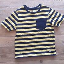 Boys Baby Gap Size 4 Years Shirt Photo