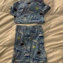 Boys Gap Pajamas 10 Sharks Photo