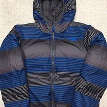 Boys Northface Winter Coat Photo