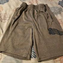 Boys Puma Shorts Size M 10/12 Gray Photo