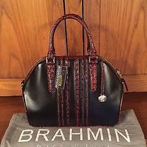 Brahmin Hudson Satchel Black Tuscan Vineyard Handbag New With Tags Photo