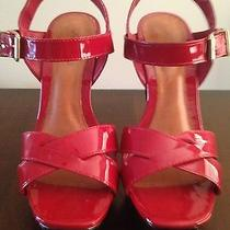 Brand New Aldo Sandal Photo