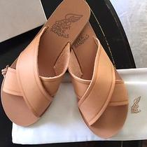 Brand New Ancient Greek Sandals Photo