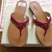 Brand New Authentic Coach Sandals Leather Flip Flops Size 7b 128.00 Photo