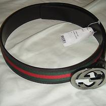 Brand New Authentic Mens Gucci Belt Brown/coffee   Photo