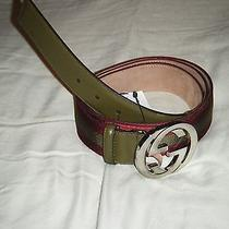 Brand New Authentic Mens Gucci Belt  Char/parsley Photo