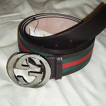 Brand New Authentic Mens Gucci Belt  Vrv/cocoa Photo