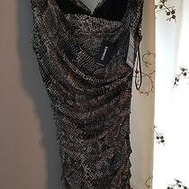 Brand New Black and White Express Dress Size 6 Nwt 148.00 Photo